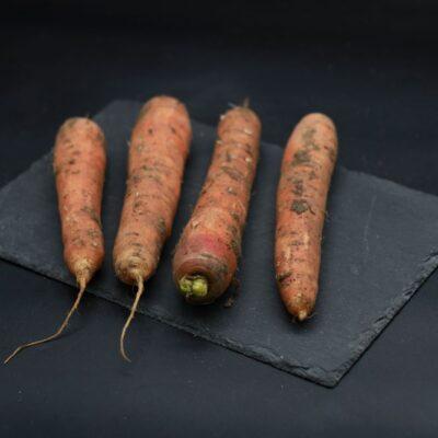 carottes de l'épicerie primeur nos champs occitans à montauban