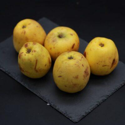 pommes à compote de l'épicerie primeur et drive nos champs occitans à montauban