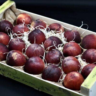 Colis de nectarines de l'épicerie primeur et drive nos champs occitans à montauban