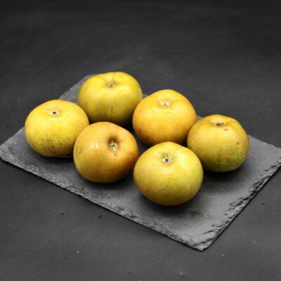 pommes reinette du canada de l'épicerie primeur et drive nos champs occitans à montauban