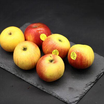 pomme reine des reinettes de l'épicerie primeur et drive nos champs occitans à montauban