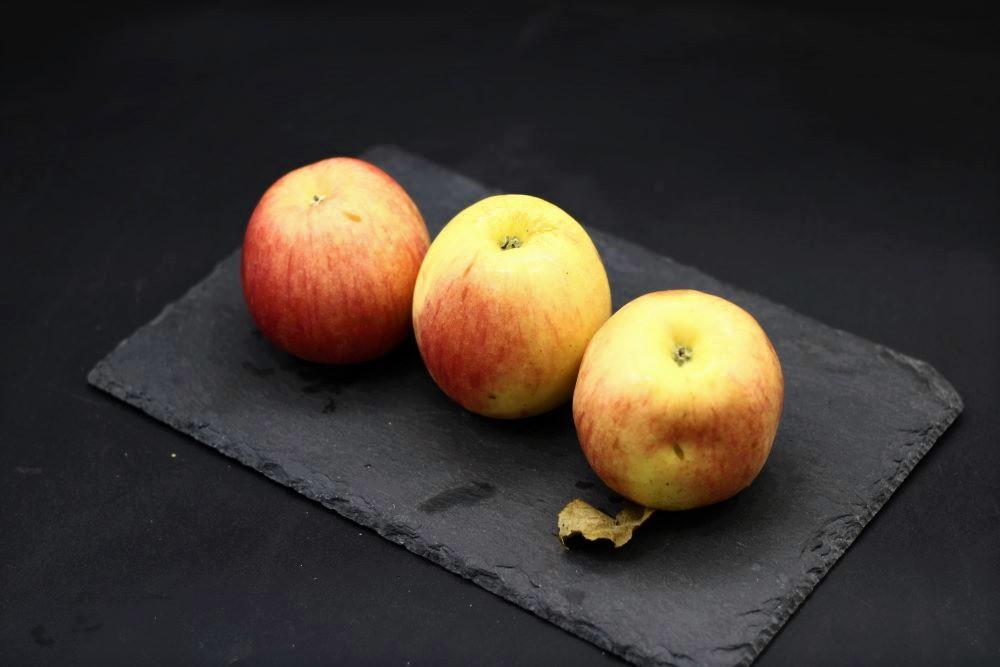 pommes royal gala bio de l'épicerie primeur et drive nos champs occitans à montauban